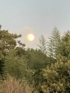 ほぼ中秋の名月