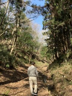 水戸市森林公園を歩いてきました